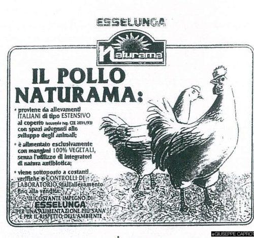pollo-naturama-1