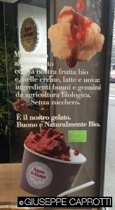Rigoni gelato