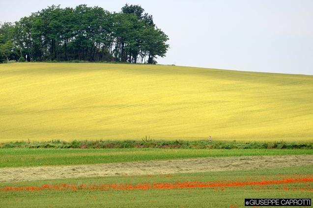 agricoltura brianza 1