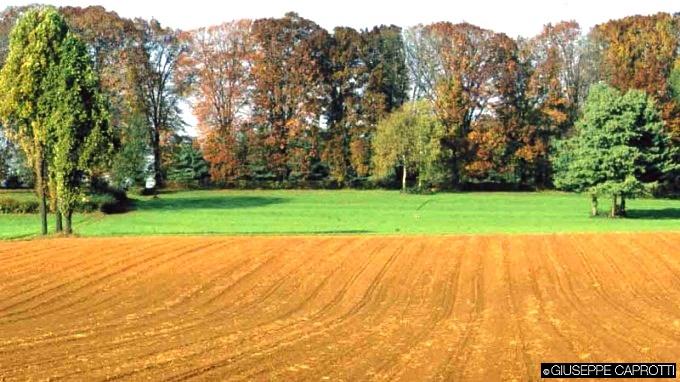 agricoltura brianza