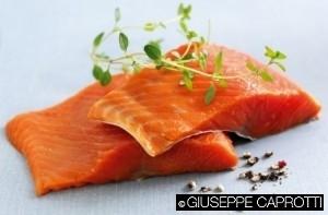 salmone cover
